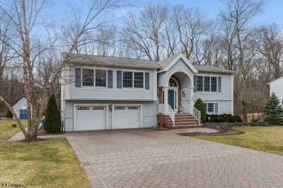Montville Twp. Single Family Home For Sale: 26 Clifford Dr