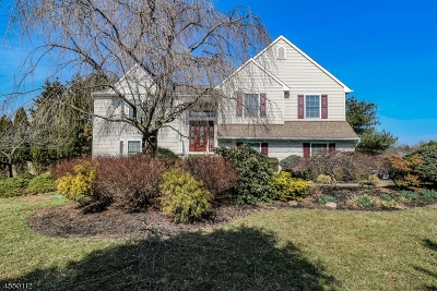 Raritan Twp. Single Family Home For Sale: 31 Amwell Rd