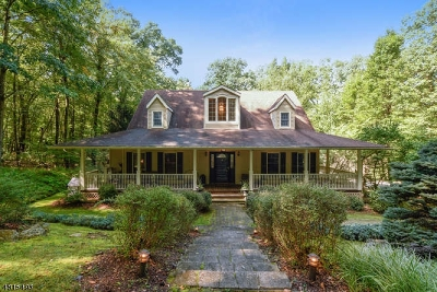 Tewksbury Twp. Single Family Home For Sale: 289 W Valley Brook Rd