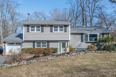 Oakland Boro Single Family Home For Sale: 22 Hopper St