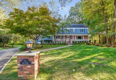 Roseland Boro Single Family Home For Sale: 12 Rall Ct