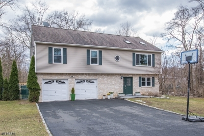 Montville Twp. Single Family Home For Sale: 21 Hillcrest Ave