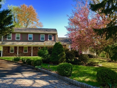 Bergen County Single Family Home For Sale: 17 Column Ct