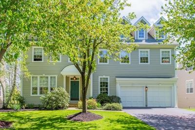 Bernards Twp., Bernardsville Boro Single Family Home For Sale: 67 Carlisle Rd