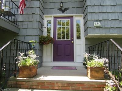 Bethlehem Twp., High Bridge Boro Single Family Home For Sale: 430 Charlestown Rd