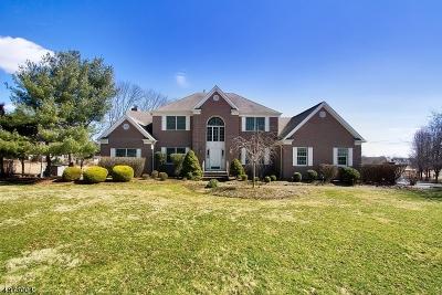 Readington Twp. Single Family Home For Sale: 234 Johnson Rd