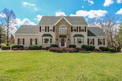 Flemington Boro, Raritan Twp. Single Family Home For Sale: 2 Starview Dr