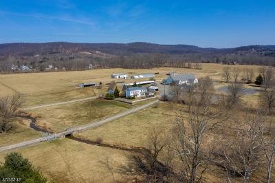Alexandria Twp., Frenchtown Boro Single Family Home For Sale: 610 Little York-Mt Pleas