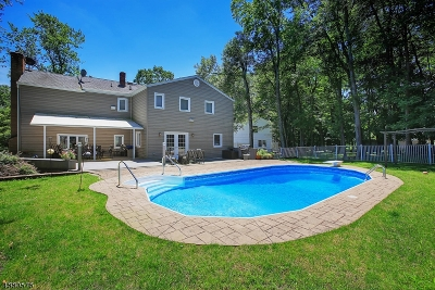 Somerset County Single Family Home For Sale
