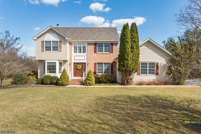 Readington Twp. Single Family Home For Sale: 17 John Reading Rd