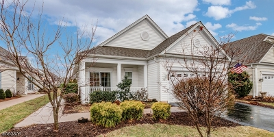 Somerset County Single Family Home For Sale: 164 Stone Manor Dr