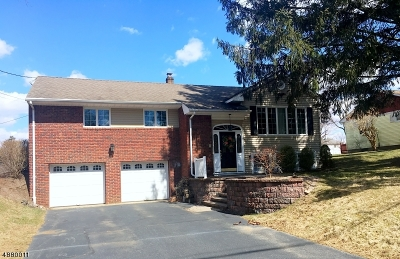 Randolph Twp. Single Family Home For Sale: 24 Randolph Ave