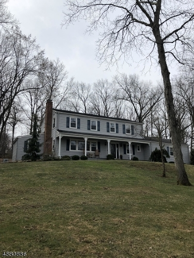 Somerset County Single Family Home For Sale: 44 Dryden Rd