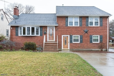 Edison Twp. Single Family Home For Sale: 301 Grandview Ave