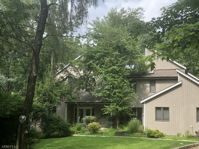Bridgewater Twp. Single Family Home For Sale: 17 Adams Rd