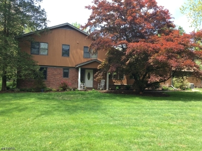 Somerset County Single Family Home For Sale: 92 Whitenack Rd