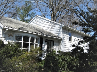 Denville Twp. Single Family Home For Sale: 5 Riverside Dr