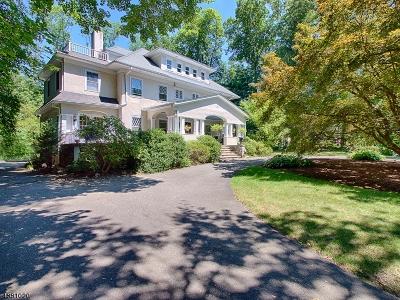 Mountain Lakes Boro Single Family Home For Sale: 101 Blvd