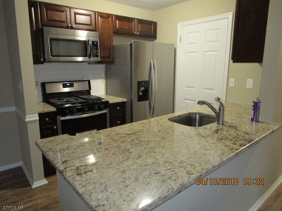 Somerset County Condo/Townhouse For Sale: 93 Haverhill Pl