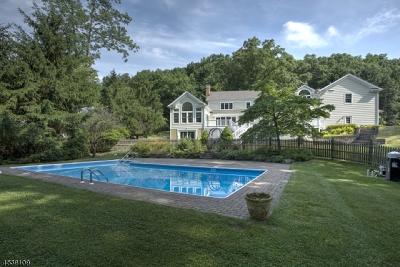 Mendham Boro, Mendham Twp. Single Family Home For Sale: 44 Mountainside Rd