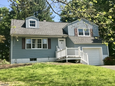 Clinton Town Single Family Home For Sale: 32 Lingert Ave