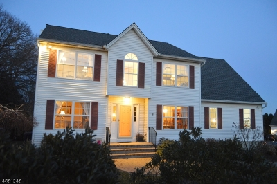 Boonton Town Single Family Home For Sale: 3 Jinella Ct