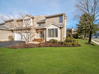 Morris Twp. Condo/Townhouse For Sale: 73 Redner Rd
