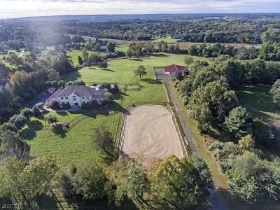 Readington Twp. Single Family Home For Sale: 124 Hillcrest Rd
