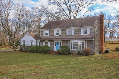 Somerset County Single Family Home For Sale: 142 Seney Dr