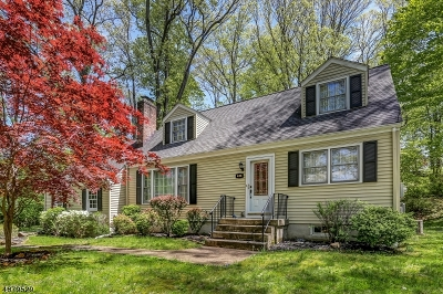 Bernards Twp. Single Family Home For Sale: 436 Mt Airy Rd