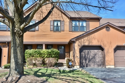 Somerset County Condo/Townhouse For Sale: 10 Estate Rd