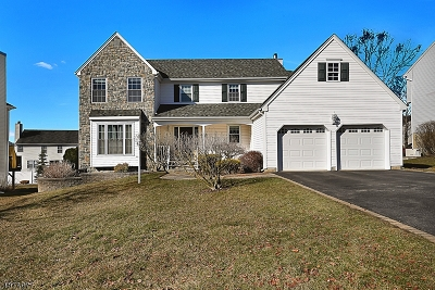 Mount Olive Twp. Single Family Home For Sale: 16 Player Pl