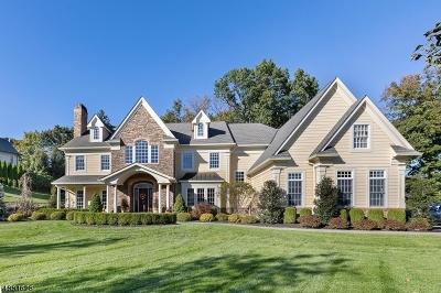 Franklin Lakes Boro Single Family Home For Sale: 255 Glen Pl
