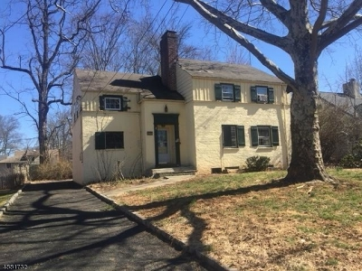 Single Family Home For Sale: 234 Sandford Ave