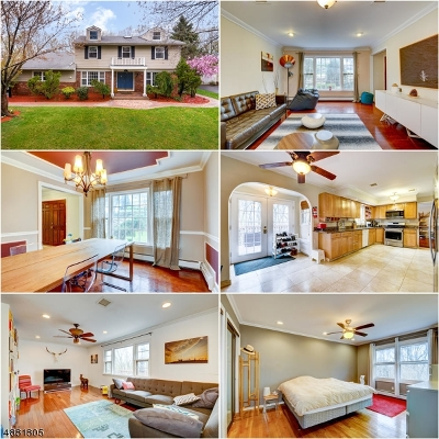 Parsippany Single Family Home For Sale: 60 Whitewood Dr