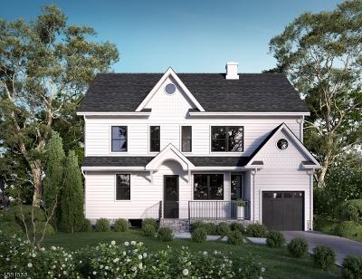 Springfield Single Family Home For Sale: 19 Kipling Ave