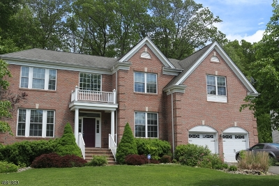 Mount Olive Twp. Single Family Home For Sale: 12 Red Maple Ln