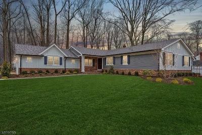 Scotch Plains Twp. Single Family Home For Sale: 13 Black Birch Rd