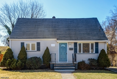 Belleville Twp. Single Family Home For Sale: 249 Fairway Ave
