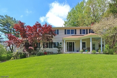 Mendham Boro, Mendham Twp. Single Family Home For Sale: 17 Franklin Rd