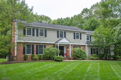 Mendham Boro, Mendham Twp. Single Family Home For Sale: 20 Forest Dr