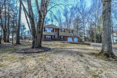 Branchburg Twp. Single Family Home For Sale: 617 Snowbird Way
