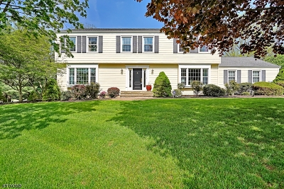 Long Hill Twp Single Family Home For Sale: 15 Fenview Rd