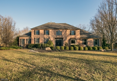 Montgomery Twp. Single Family Home For Sale: 39 Willow Run Lane