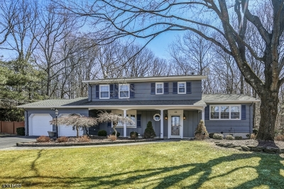 Roxbury Twp. Single Family Home For Sale: 23 Mildred Ter