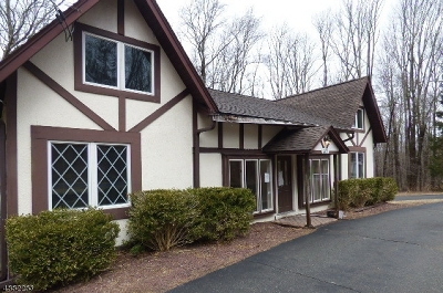 Mount Olive Twp. Single Family Home For Sale: 351 River Rd