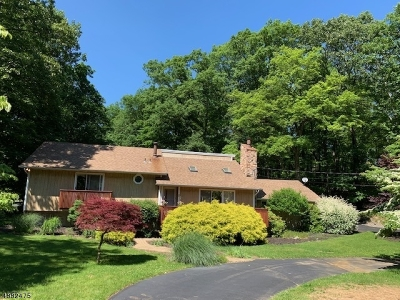 Byram Twp. Single Family Home For Sale: 50 Lee Hill Rd