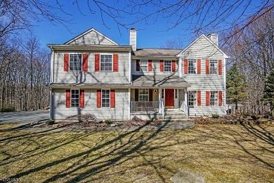 Rockaway Twp. Single Family Home For Sale: 245 Old Beach Glen Rd