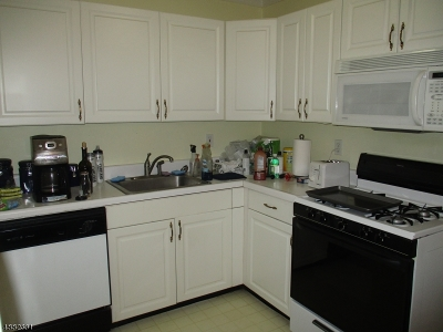 Morris Twp. Condo/Townhouse For Sale: 415 Pitney Pl