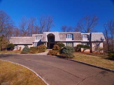 Bridgewater Twp. Single Family Home For Sale: 73 Hillcrest Road